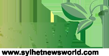 Snw Logo